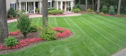 Landscaping Mowing Edging Line Trim