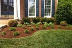 Yard Plantings