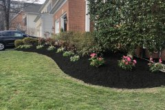 mulch-plantings